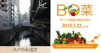 東京アートポイント計画「LOB TOKYO 09-10」クルーズ+水上マーケット - 水辺にまつわる2つのイベントを開催