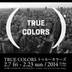 第6回恵比寿映像祭「トゥルー・カラーズ」- 映像メディアが映し出す現代社会の多様性を考える – 2月23日まで