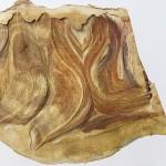 アーティスト・デュオ Nerholの新作展 – 金沢21世紀美術館、ギャラリーSLANTで開催中